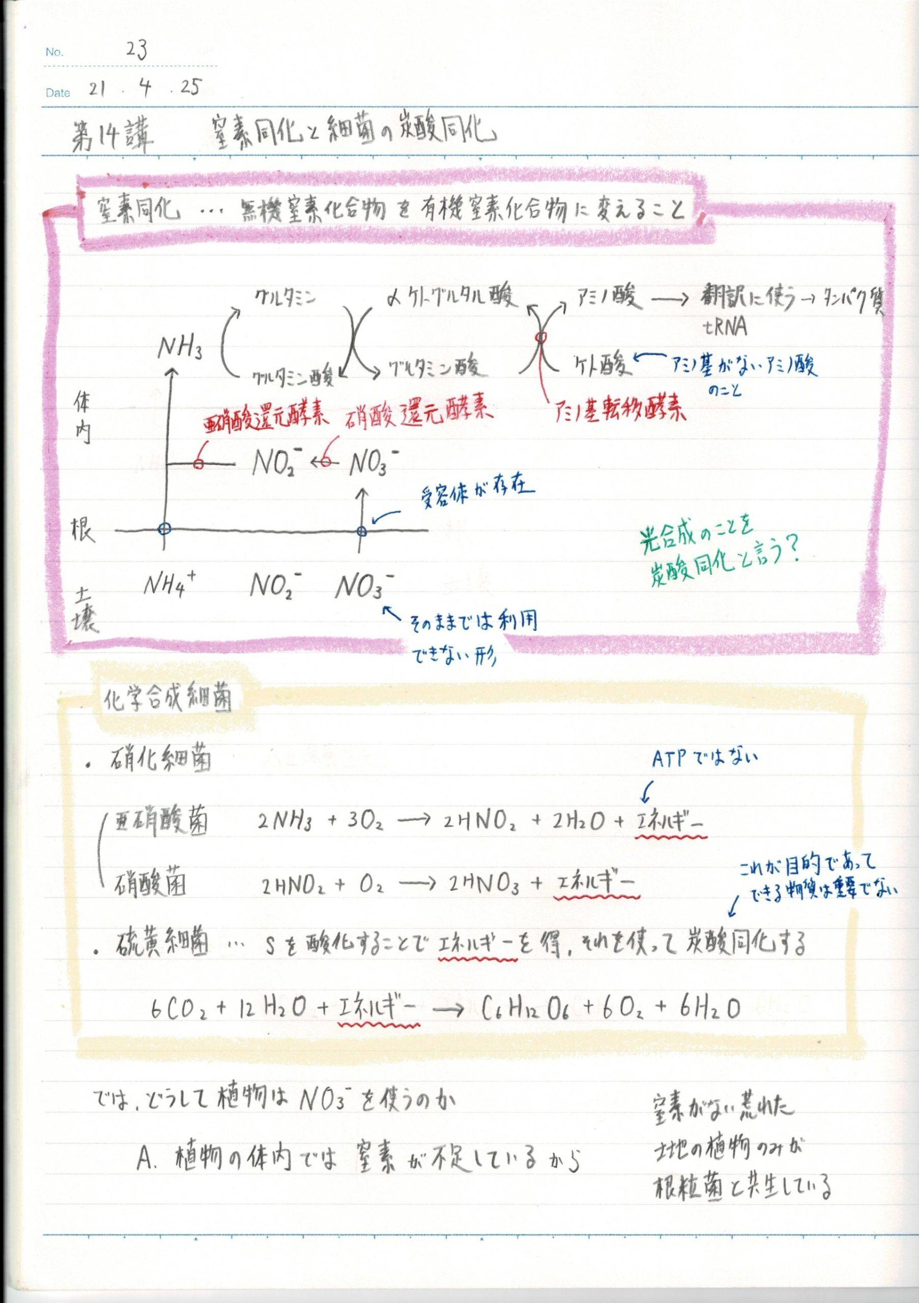 蛍光ペンで囲んだ理科ノート