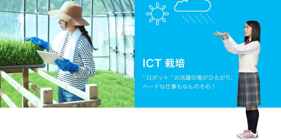 ICT栽培を行う女性