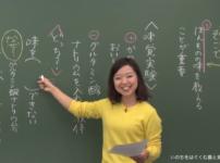 文章の解説動画