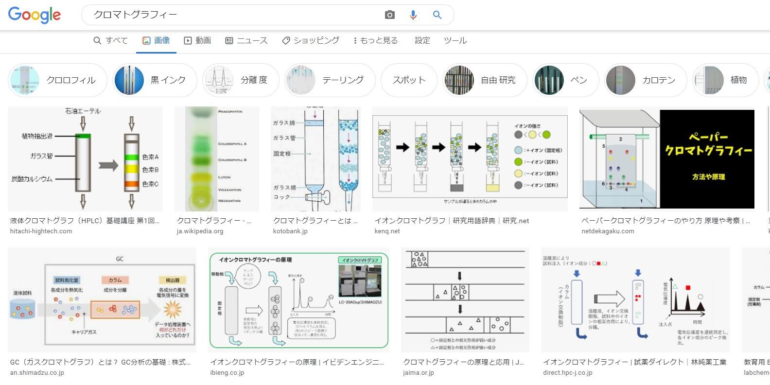 画像検索の例